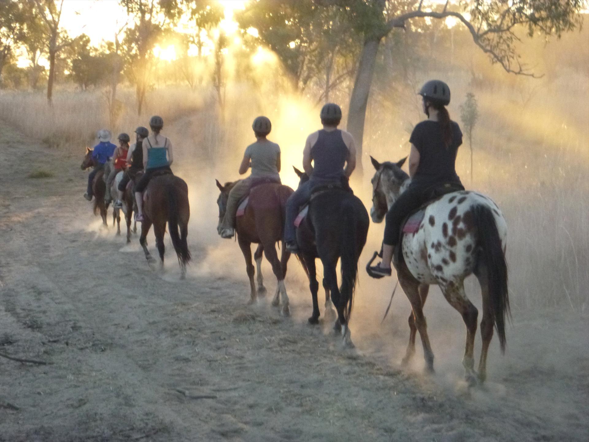 Yeehaa Trail Rides