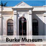 Robert Ohara Burke Museum Beechworth history gold miners