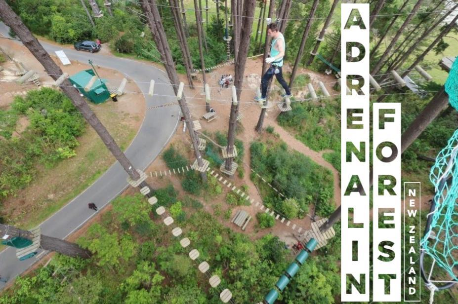 Adrenalin Forest Auckland