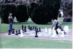 Giant Chess in Action!