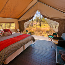 Superior Tented Cabin  Room Image