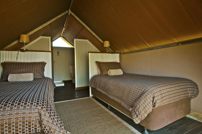 Standard Tented Cabin Room Image