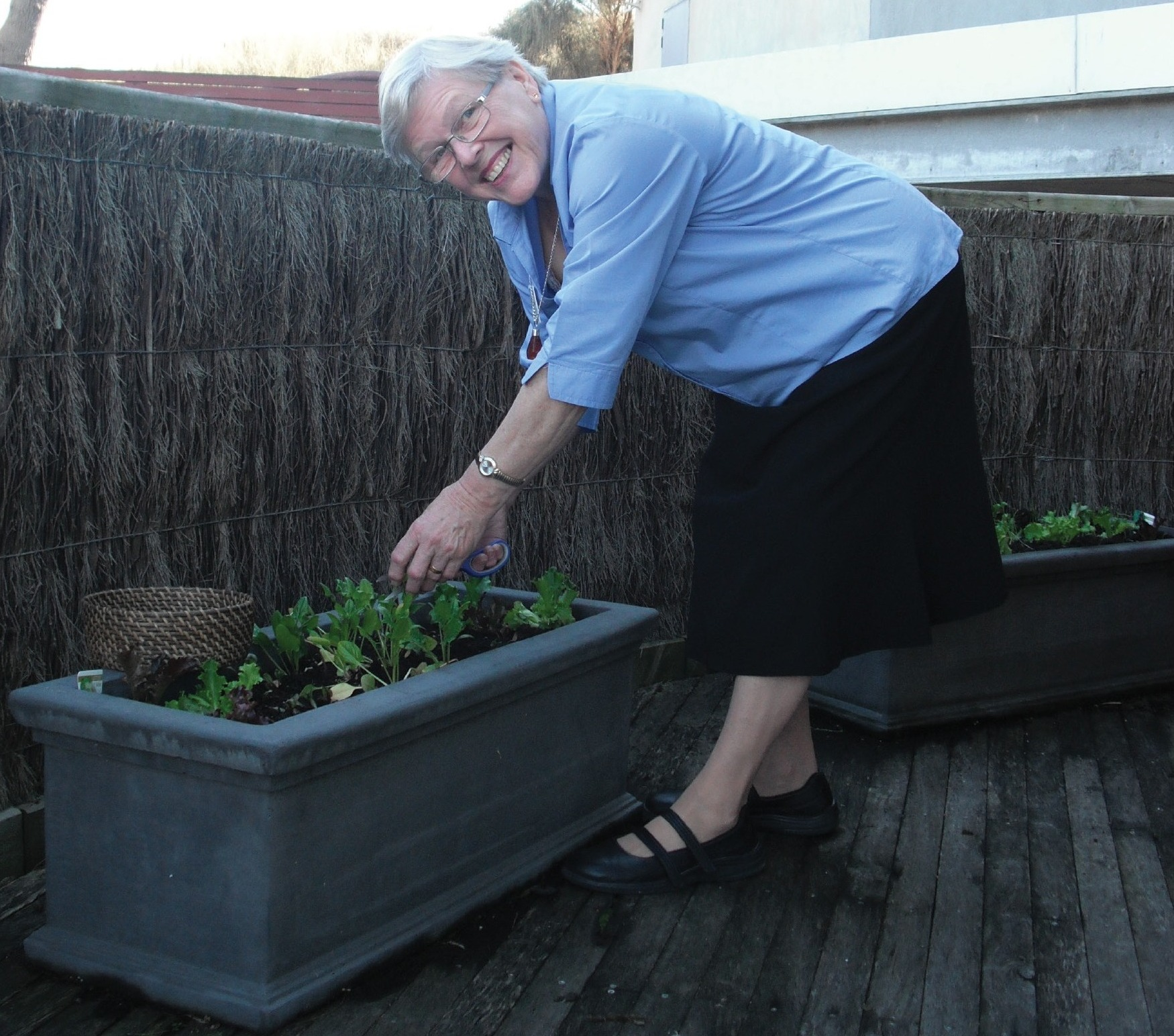 Frankston Visitor Information Centre Volunteer tending plants