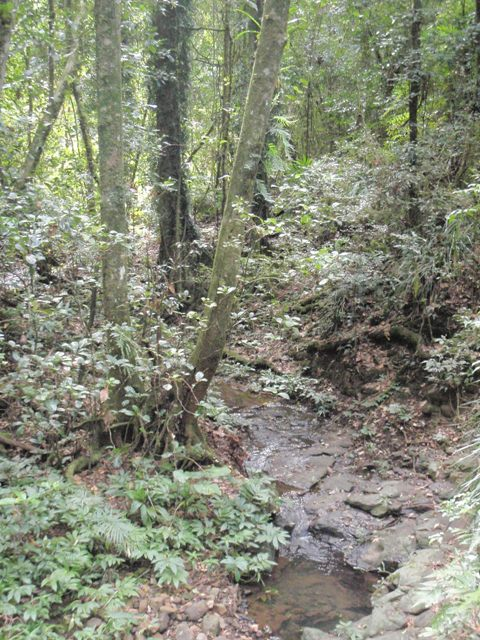 Boarder Ranges National Park