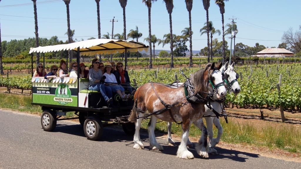 Swan Valley Wagon Tours