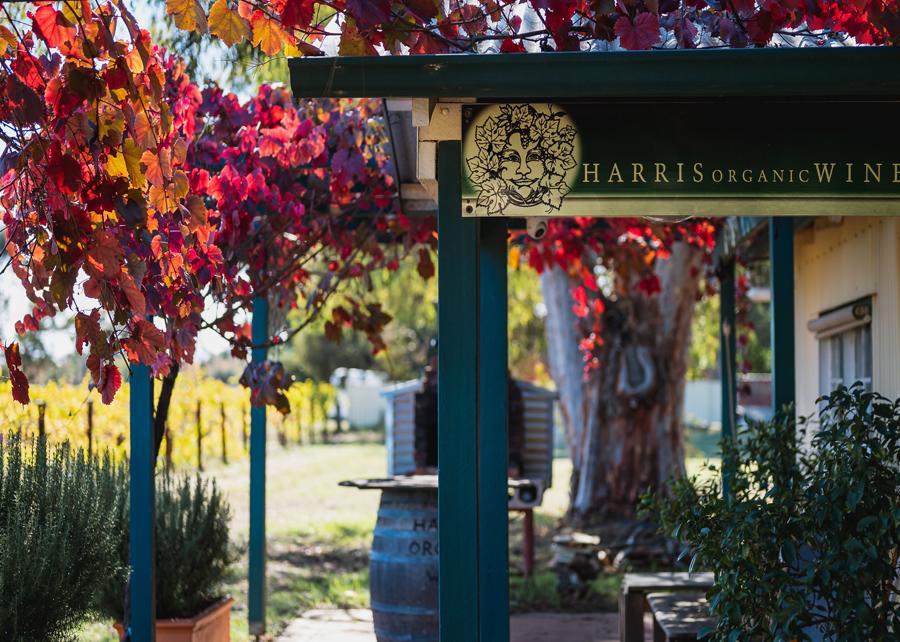 Wine Tour & Taste -  Harris Organic Wines