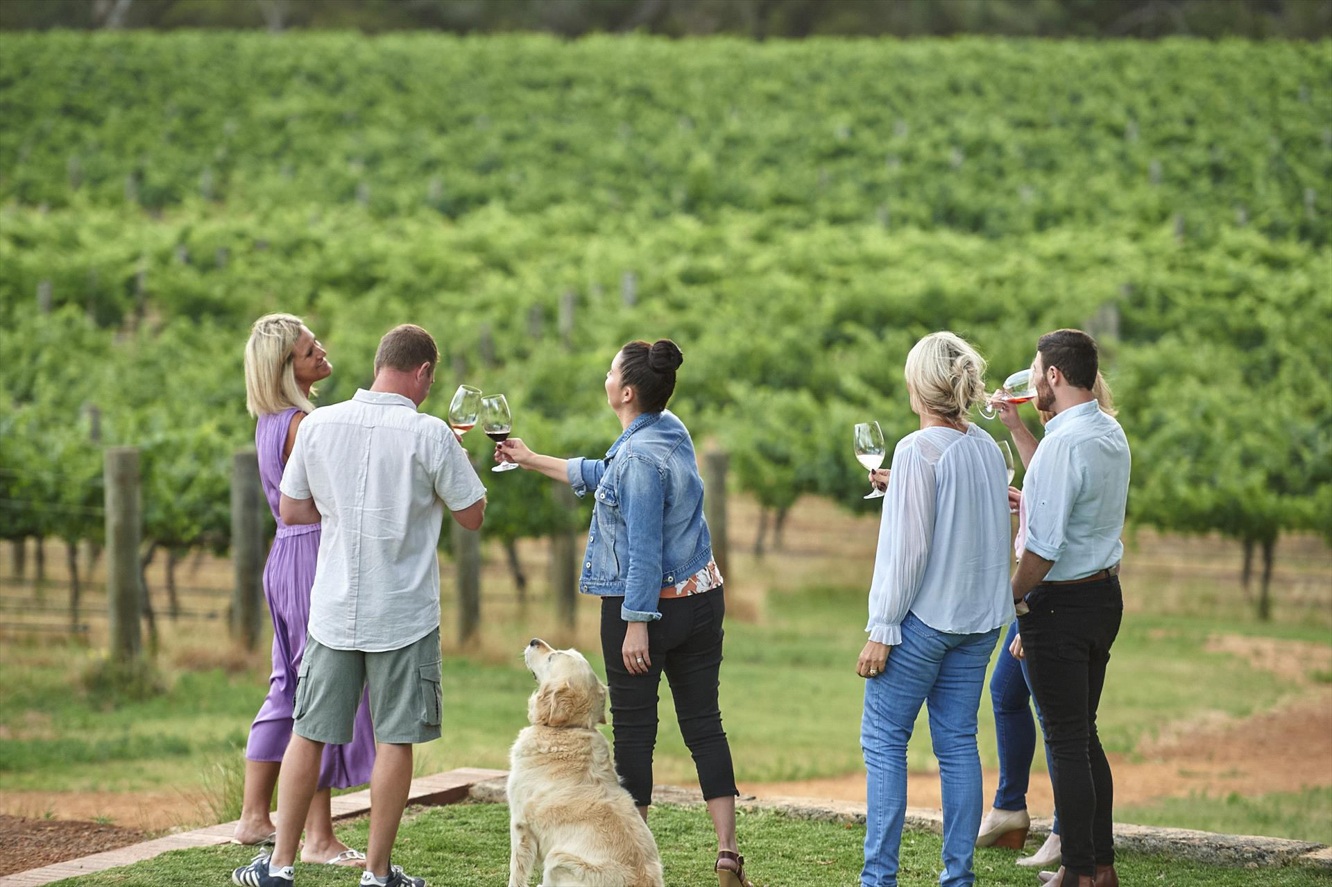 Upper Reach Winery Tours