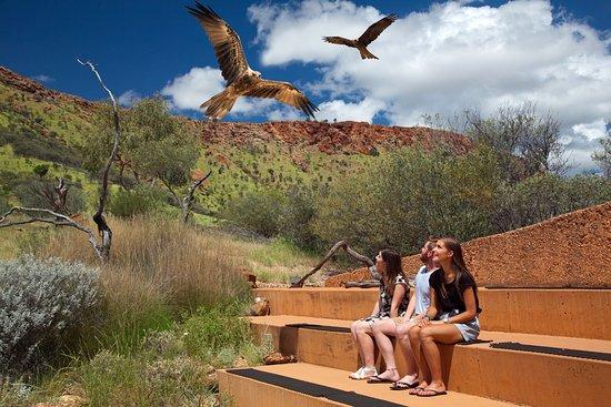Alice Springs Family Fun Day