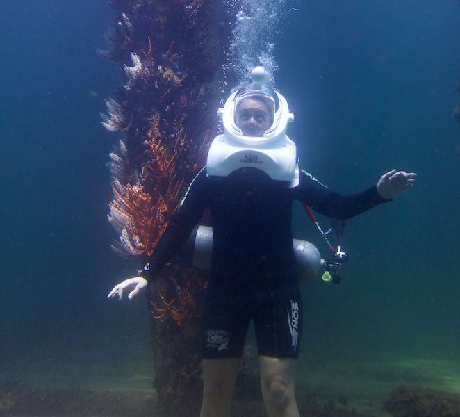 Ningaloo Whaleshark Swim