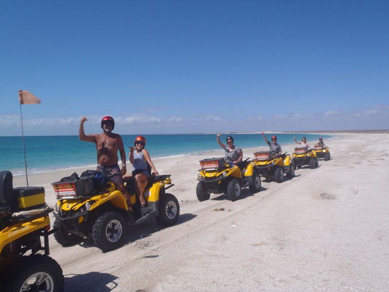 Coastal Adventure Tours