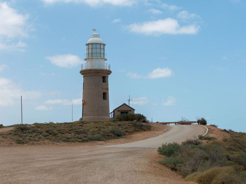 Ningaloo Safari Tours