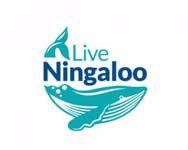 Live Ningaloo