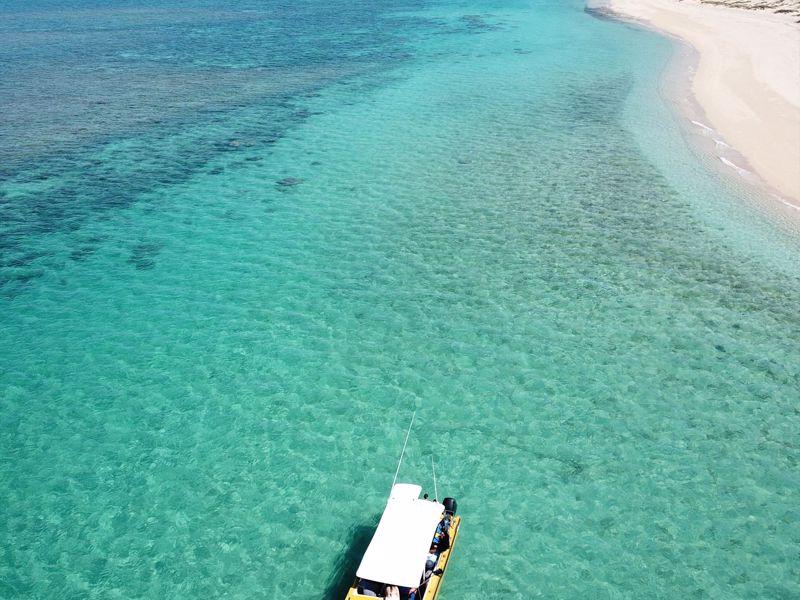 Cape Immersion Tours