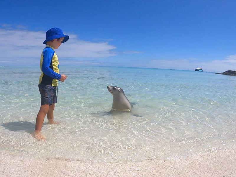 Abrolhos Adventures