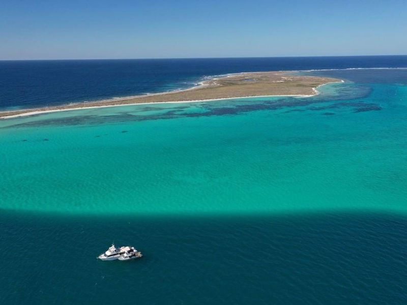 Abrolhos Adventures