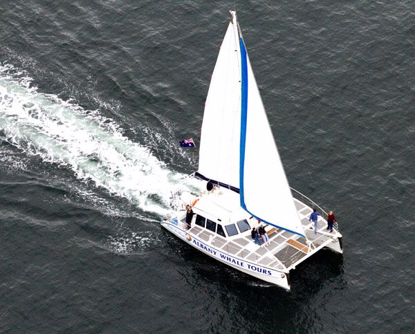 Albany Whale Tours/ Sail-A-Way