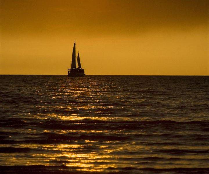 Sail Darwin!