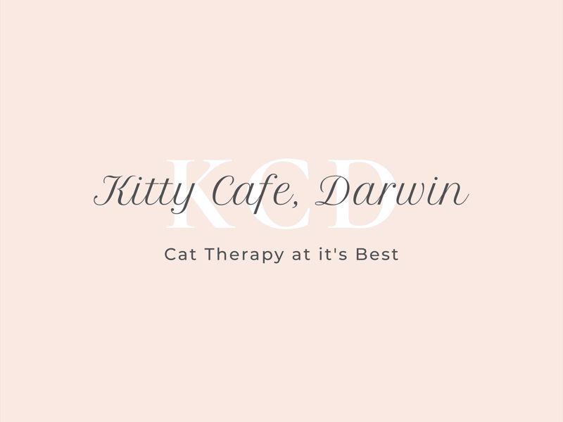 Kitty Cafe Darwin