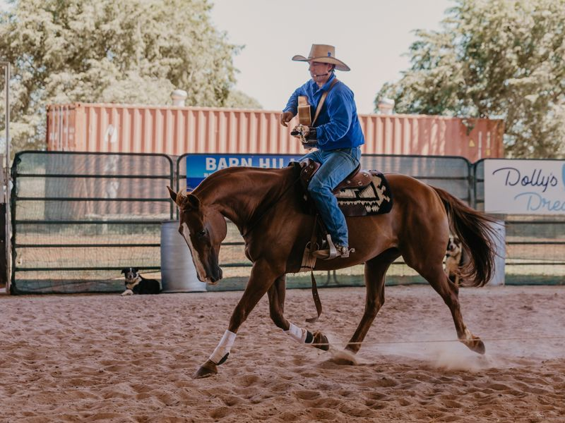 Katherine Outback Experience Show