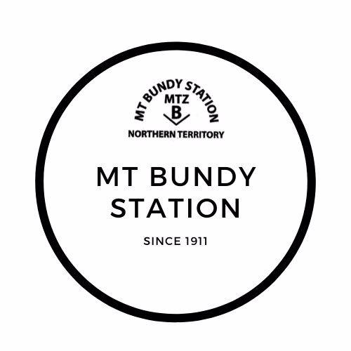 Mount Bundy Station