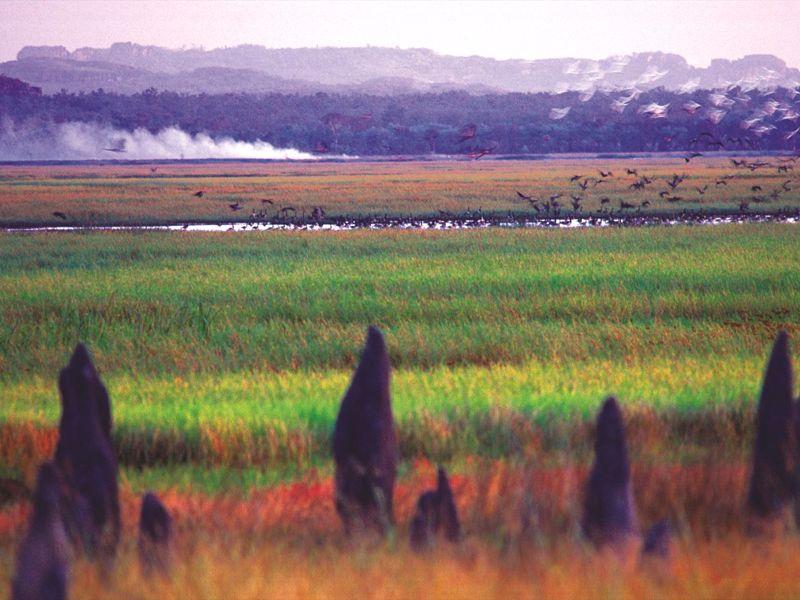 Arnhemlander Cultural & Heritage Tour