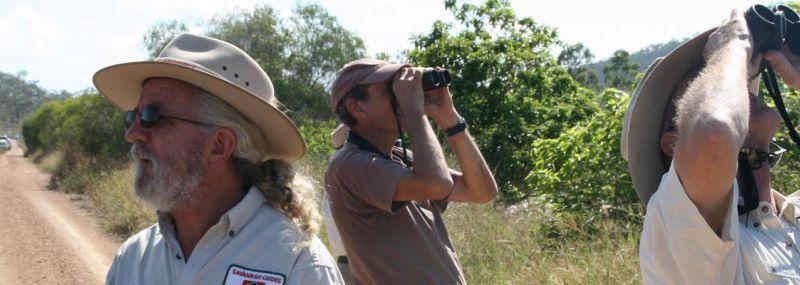 Savannah Guides
