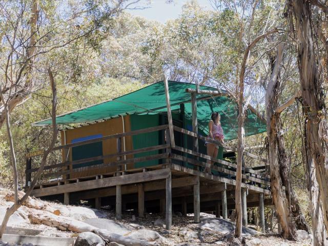 Woody Island Eco Tours