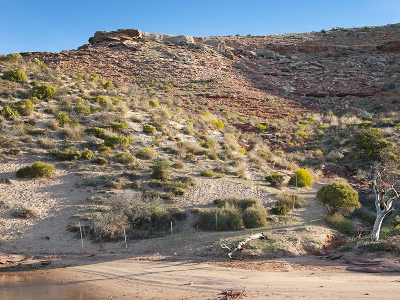 Kalbarri Wilderness Cruises