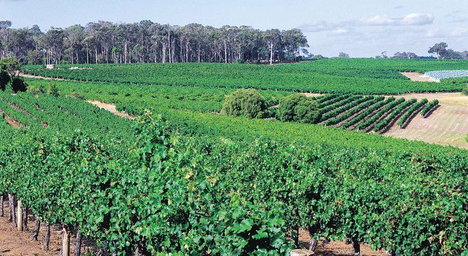 Harvest Tours and Charters Margaret River