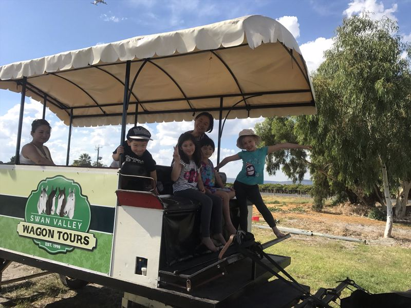 Swan Valley Wagon Tours