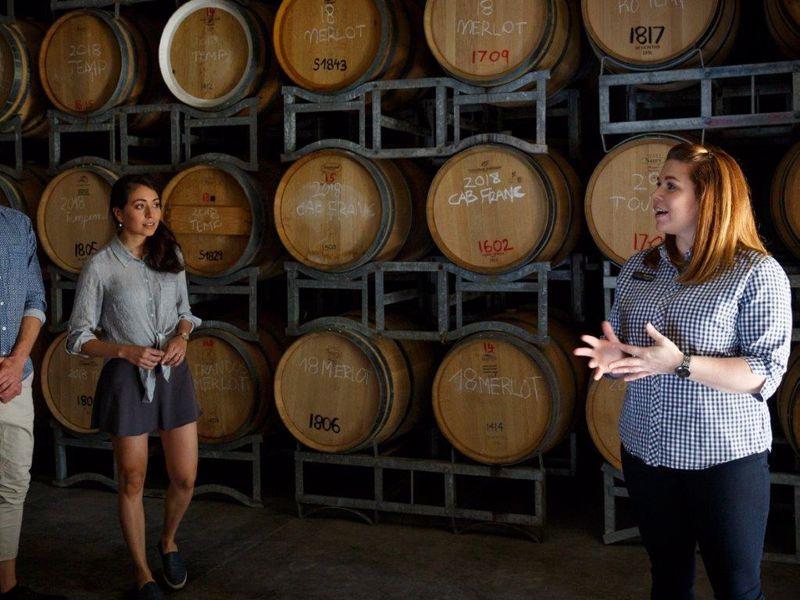 Olive Farm Wines Tour & Taste