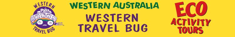 Western Travel Bug