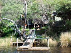 Donnelly River Cruises