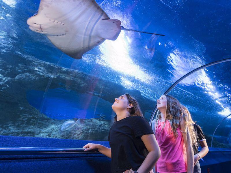 AQWA - Aquarium of Western Australia