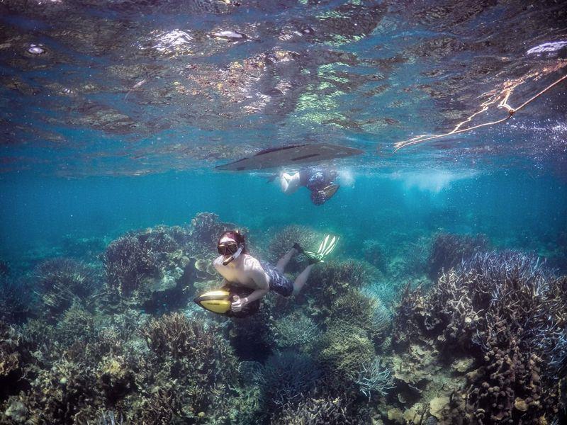 Ningaloo Kayak Adventures