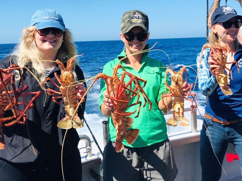 Fremantle Rock Lobster Tours